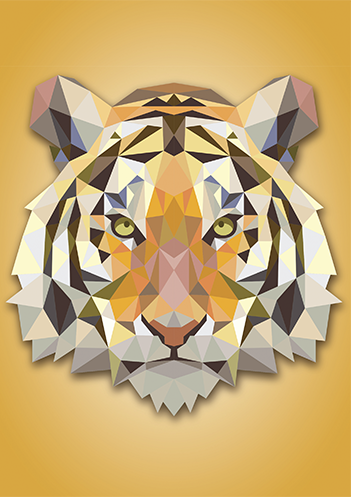 Tigre Graphics